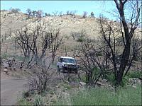 Rob drives past the burned out trees