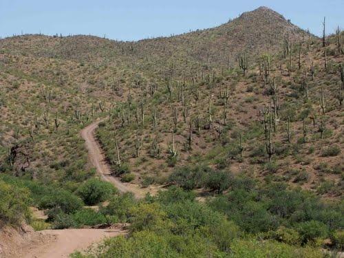 Tucson Wash